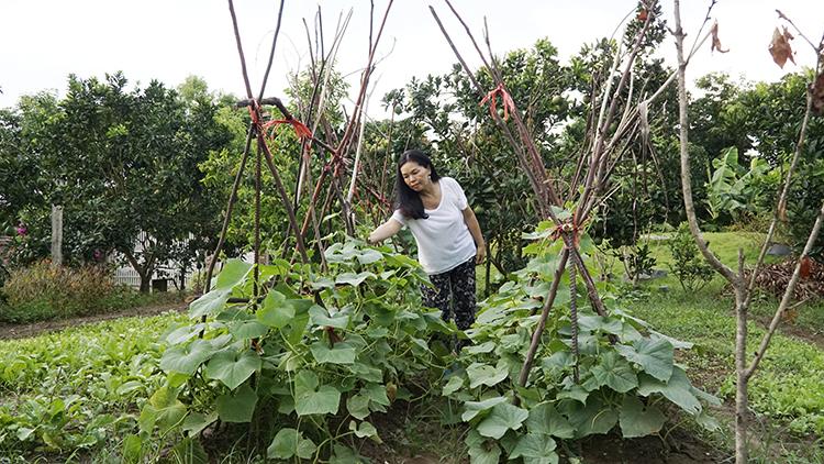 Mong muốn ban đầu chỉ là có vườn rau sạch để ăn, sau 3 năm, chị Tâm đã bán nhà phố để đầu tư hết cho nhà vườn. Ảnh: Trọng Nghĩa.