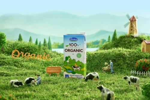 Nhiều người chuộng lối sống organic - 3