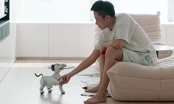 BBC và chó cưng điện tử. Ảnh: Zhuanlan.