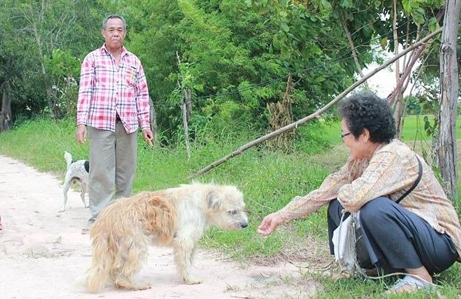 Ông Nang Noi Sittisarn (áo kẻ) chấp nhận để chú chó Bon Bon ở lại nhà mới - là ngã ba đường nó vẫn ở lâu nay. Ảnh: dogthailand.