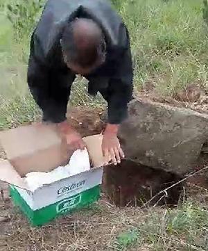 Ông Châu đưa lên hộp các tông, bên dưới là em bé đang khóc.Ảnh:readmeok.