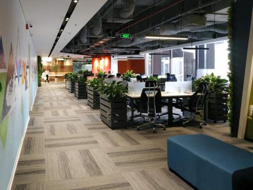Khu văn phòng làm việc chung, với thiết kế không gian mở.