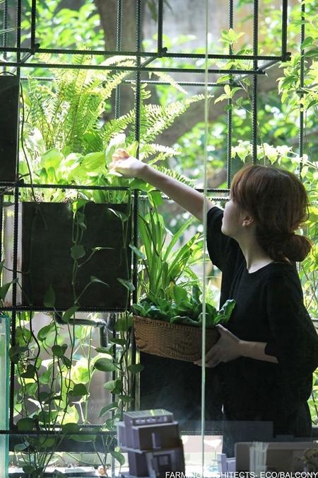 Một ban công sinh thái tại Hà Nội. Ảnh: Farming Architects.