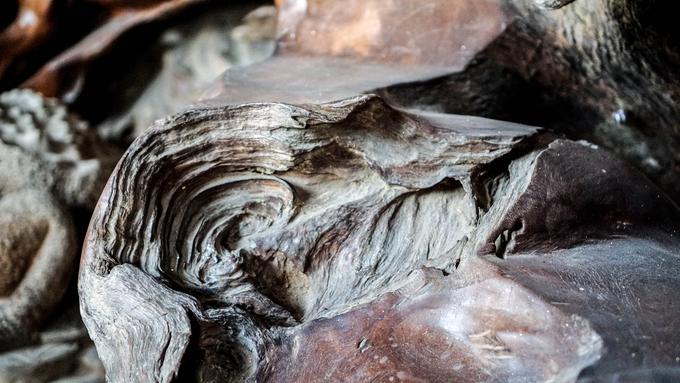 Khúc gỗ bỏ đi hóa thành tác phẩm 7 tỷ đồng