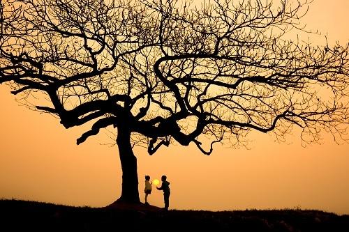 Khoảng khắc haiđứa trẻ chơiđùa trong hoàng hôn bên một cây bàng trụi láở Thạch Thất, Hà Nội được Trần Tuấn Việt ghi lại. Trước hoặc sau khi chụp, nhiếp ảnh gia sẽ tìm hiểu nhữngcâu chuyện, những thôngđiệpđể gửi gắm vàtruyền tảiđằng sau mỗi bứcảnh.Đóđềulà những câu chuyện thật.