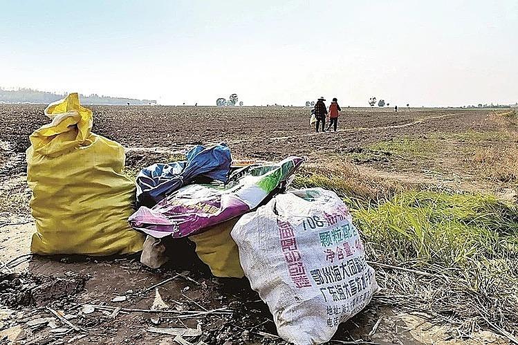 Cử chỉ ân cần đã khiến 3 bác nông dân mất sạch vụ mùa. Ảnh: Weibo.