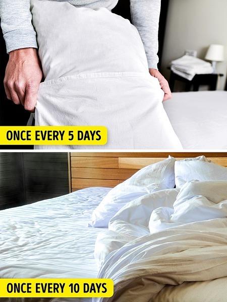 Vỏ gối nên giặt 5 ngày một lần. Vỏ ga nên giặt sau 10 ngày sử dụng.
