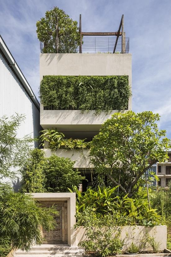 Ngôi nhà ẩn trong 'rừng rậm'