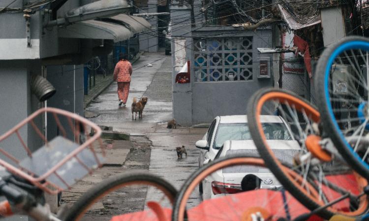 Một con ngõ nhỏ tại quận Kiều Khẩu, Vũ Hán những ngày dịch CoVid 19 bùng phát. Ảnh: Southern Metropolis Daily.