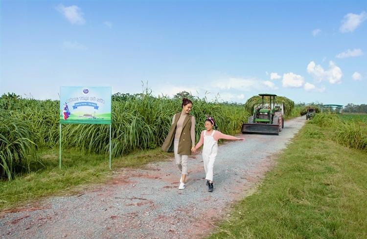 Hồng Diễm và con gái trong chuyến tham quan hoạt động chăn nuôi bò sữa tại một nông hộ đối tác của Cô Gái Hà Lan.