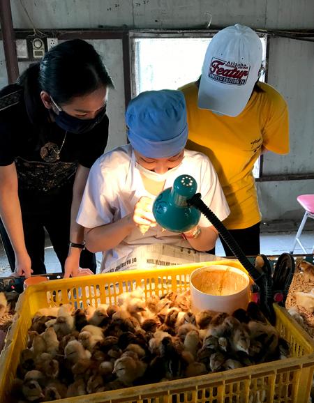 Tay nghề của Dung nổi tiếng trong làng gà nên có nhiều học viên theo học. Ảnh: Đinh Quyết.