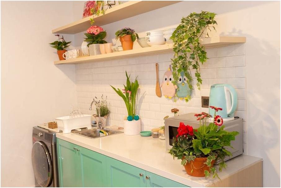 Căn bếp được điểm thêm sắc màu tươi mới với Violet châu Phi, Lavender hương thơm nhẹ, hoặc vài chậu thường xuân, giúp thanh lọc không khí.