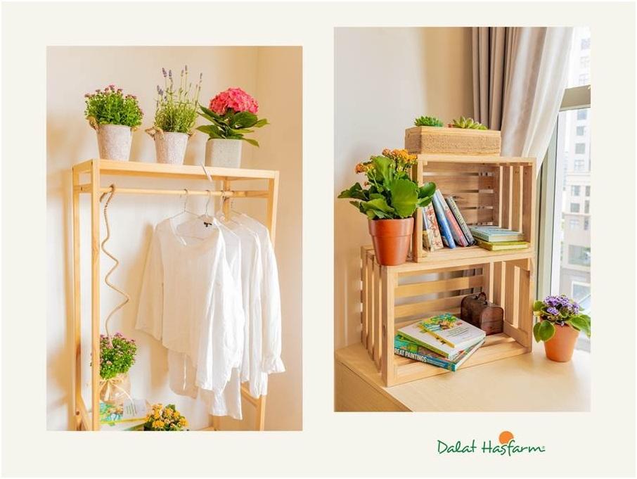 Những góc nhà nhỏ xinh lãng mạn với hoa, giá treo quần áo hay tủ sách nhỏ thêm hoa tạo cảm hứng.