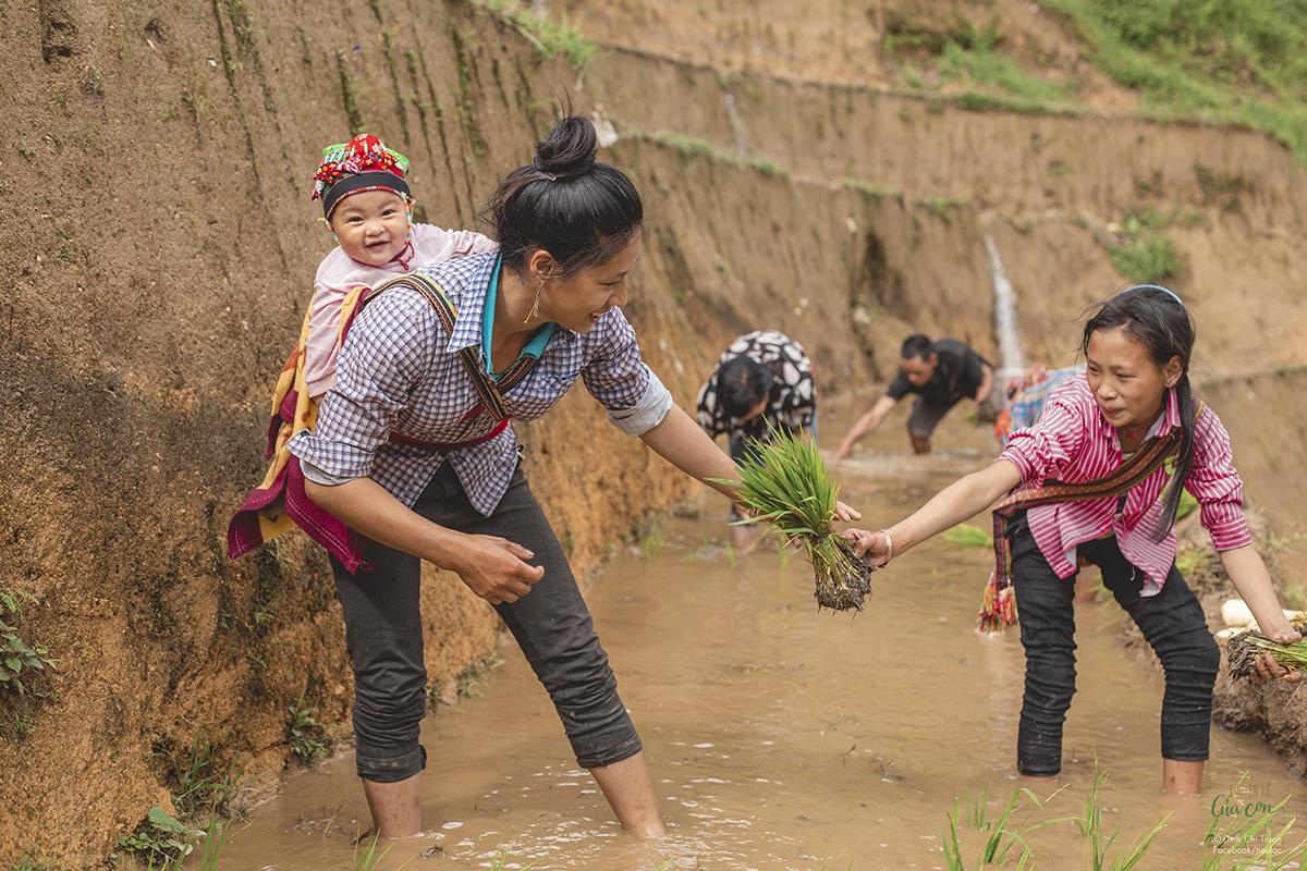 Nguyệt (phải) cũng như những đứa trẻ Cờ Lao khác đã biết làm việc đồng áng từ bé. Ảnh: Đinh Chí Trung.