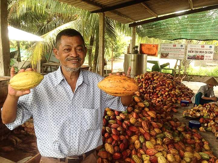 Ông Samy thu mua trái cacao tươi của nông dân với giá cao hơn thị trường. Ảnh: Nhân vật cung cấp.