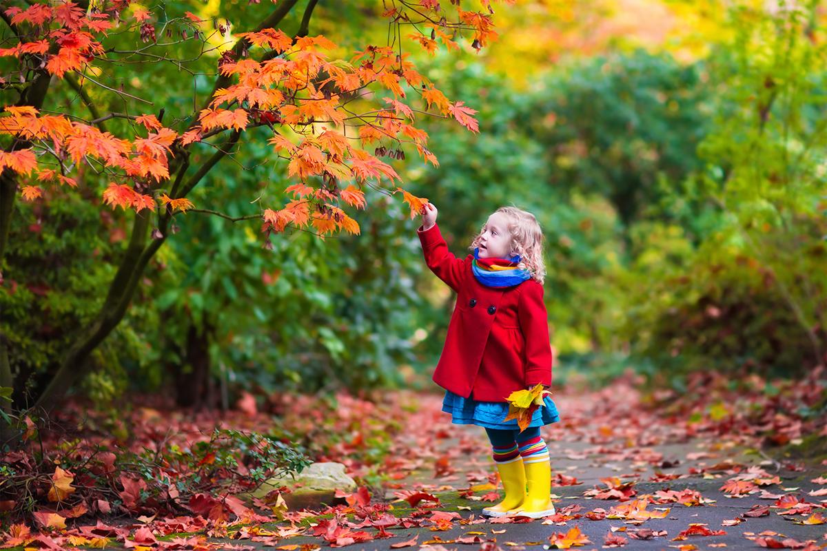 Thiên nhiên giúp trẻ nuôi dưỡng trí tưởng tượng, thôi thúc sự khám phá. Ảnh: Adobe Stock.