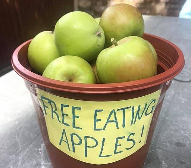 Lydia đặt nhiều thùng táo những ngày qua để tặng mọi người. Ảnh: Metro.