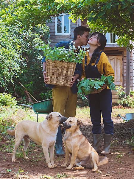 Đôi vợ chồng ngày ngày bầu bạn với đàn chó.