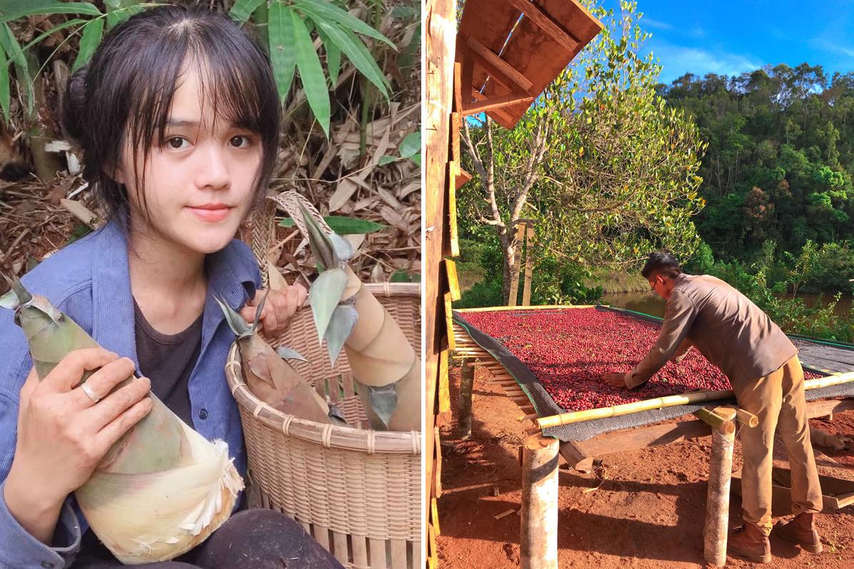 Mỹ Thuận từng có mức lương chính 15 triệu đồng/tháng, bên cạnh 2 công việc freelance, Thành An là cậu ấm chưa từng làm việc chân tay, nhưng với đam mê làm nông nghiệp sạch và cuộc sống điền viên, họ đã bỏ phố về rừng. Ảnh: Nhân vật cung cấp.