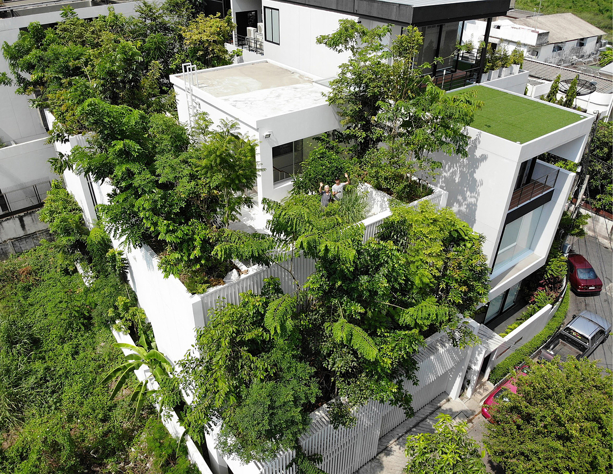 Mái nhà trồng các loại cây ăn quả, rau và thảo mộc. Ảnh: Prapan Napawongdee.