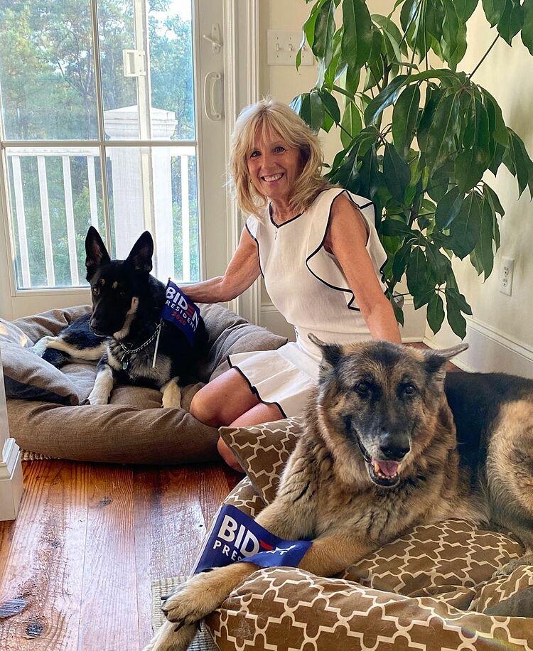 Jill, vợ Joe Biden, bên hai con chó của gia đình. Ảnh: drbiden,