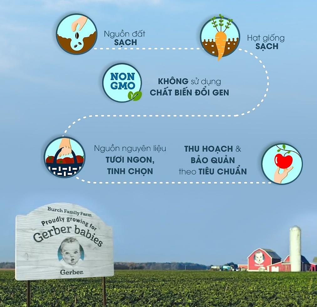 Những nông trại hữu cơ - đối tác của Gerber - luôn tuân thủ 5 tiêu chí giúp đảm bảo chất lượng và an toàn. Ảnh: Gerber.