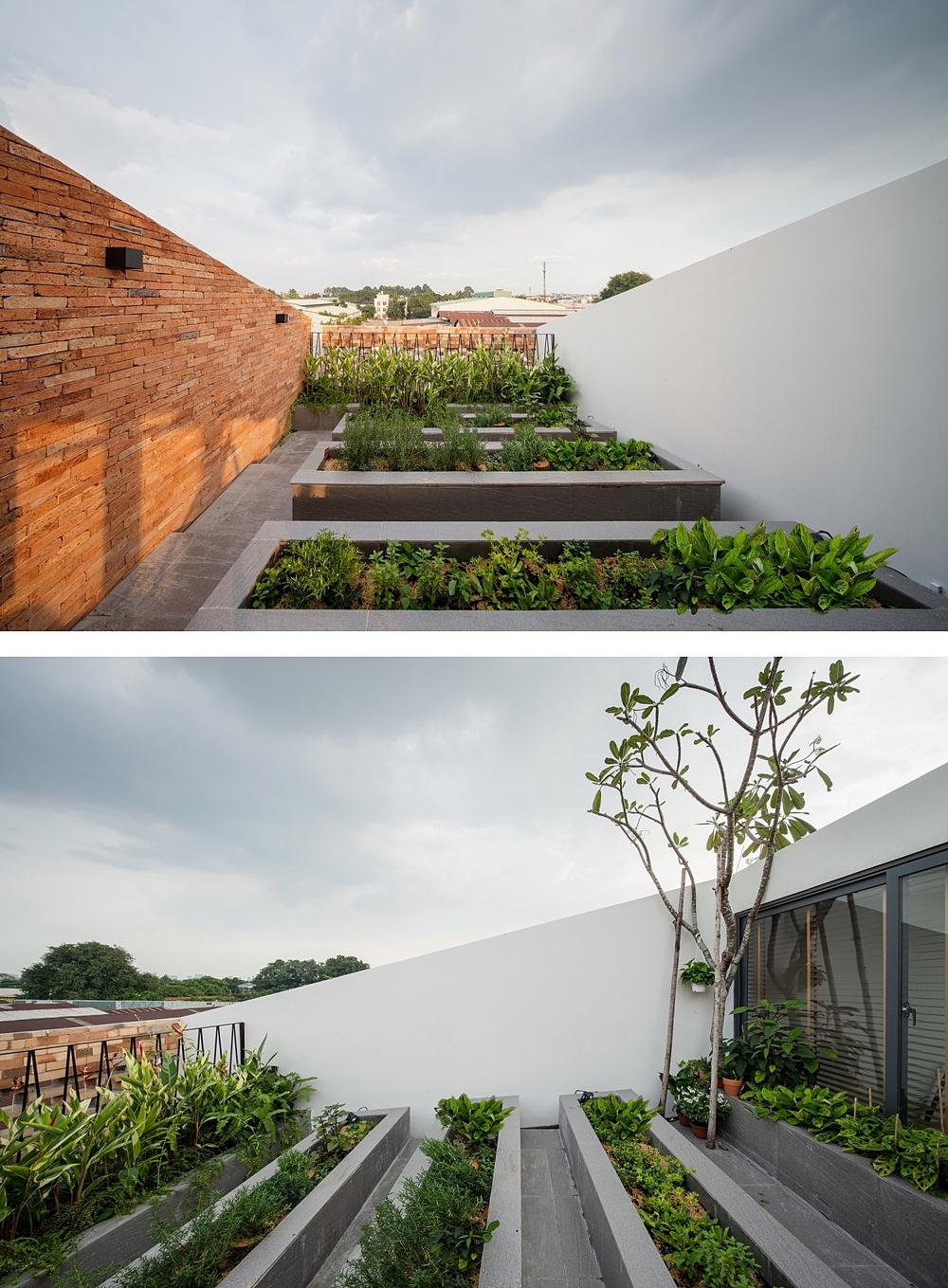 Vườn rau trên mái được thiết kế dốc, giúp công trình mát mẻ và phần bê tông trên mái không bị nứt, thấm. Ảnh: Quang Trần.