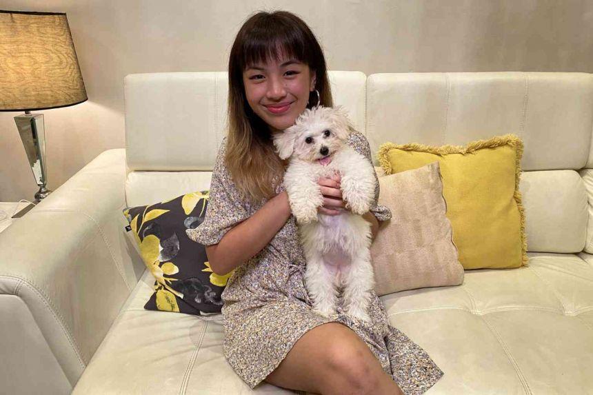 Con chó của Kua có giá 8.900 USD. Ảnh: Isabel Joy Kua/Straits Times.