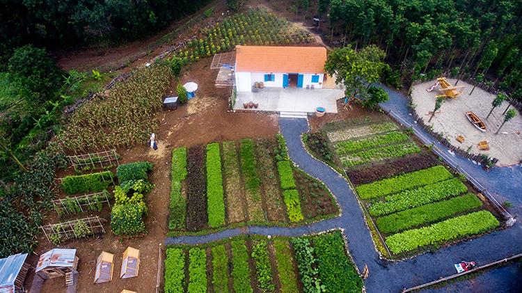 Toàn bộ khu vườn của nữ nhiếp ảnh gia Nguyễn Kim nhìn từ trên cao. Ảnh: Nhân vật cung cấp.