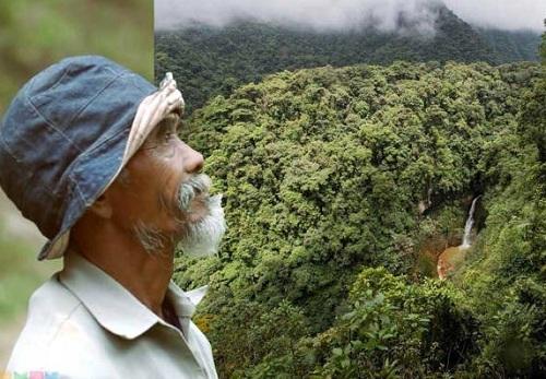 Ông Sadiman bên cánh rừng tự phủ xanh suốt 25 năm. Ảnh: