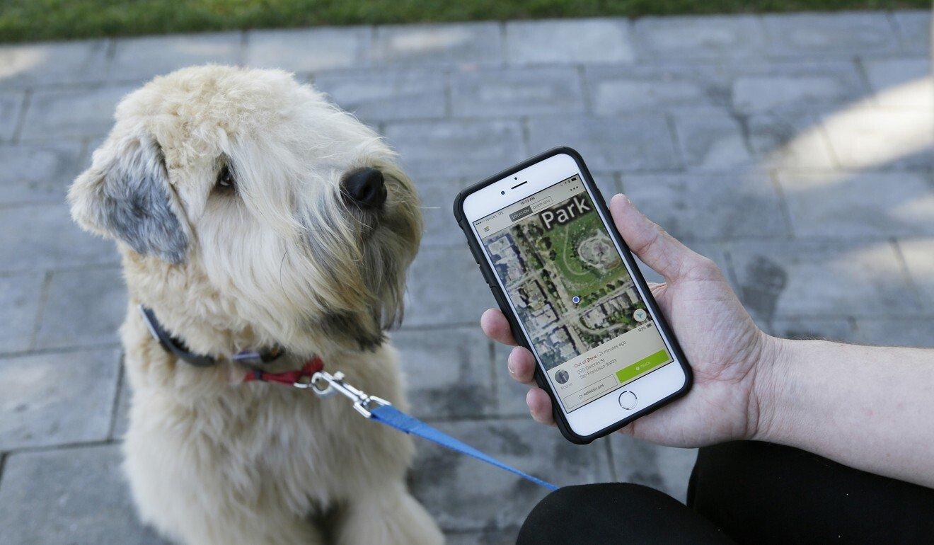 Các công ty thường quảng cáo các công cụ công nghệ cao để tìm kiếm vật nuôi bị thất lạc. Ảnh: AP.