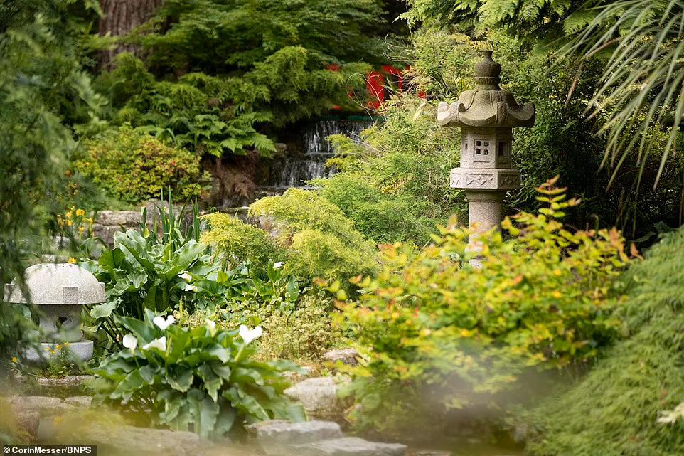 Khu vườn Nhật gây chú ý của cặp vợ chồng Anh, chưa từng tới Nhật Bản. Ảnh: Telegraph.
