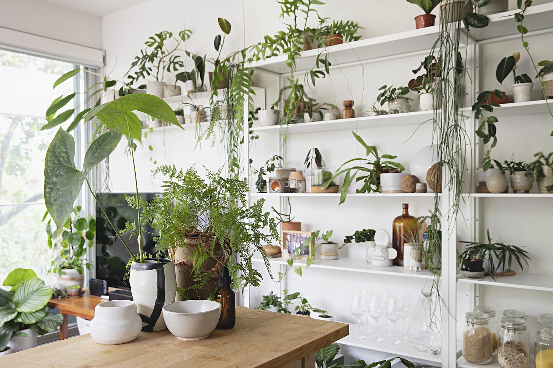 Gia chủ có thể trang trí giá, kệ bằng cây xanh hoặc lọ, bình. Ảnh: Apartment Therapy.