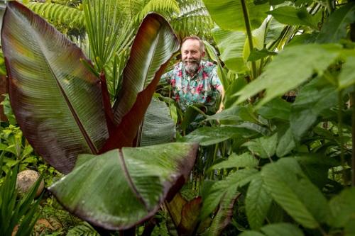 Hiện tại khu vườn của ông Mike có hàng nghìn loại cây lạ, cây quý hiếm. Ảnh: CorinMesser / BNPS.
