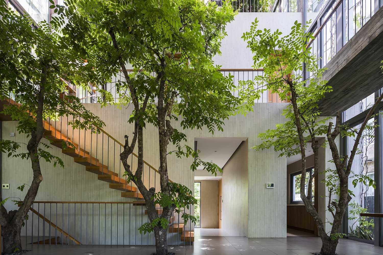 Cây cối phủ khắp không gian nhằm tạo ra một khu rừng trong nhà.