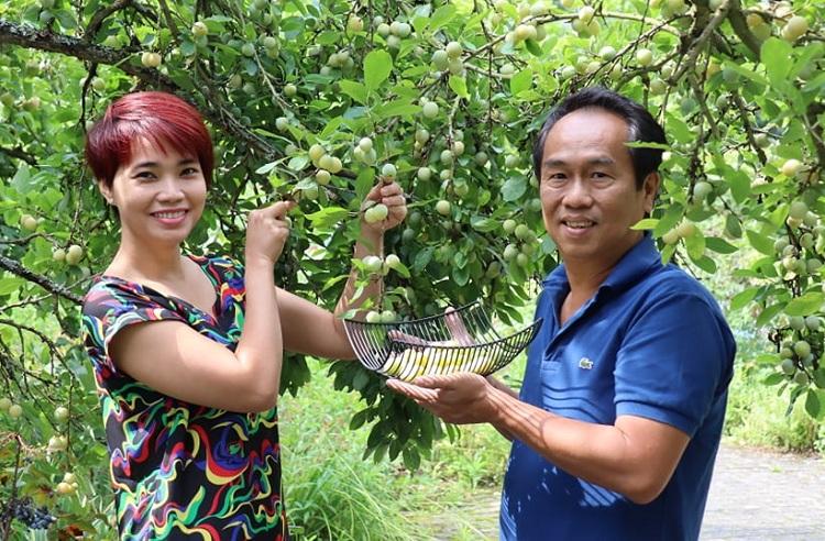 Vợ chồng chị Vân thu hoạch quả trong vườn nhà. Ngoài rau Việt trồng trong chậu ở ban công, cây trái trong vườn hai vợ chồng ăn không xuể. Ảnh: Tuyết Vân.