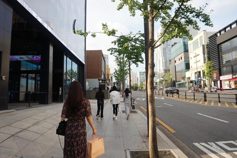 Khu phố giàu có Apgujeong ở Gangnam. Ảnh: Vice