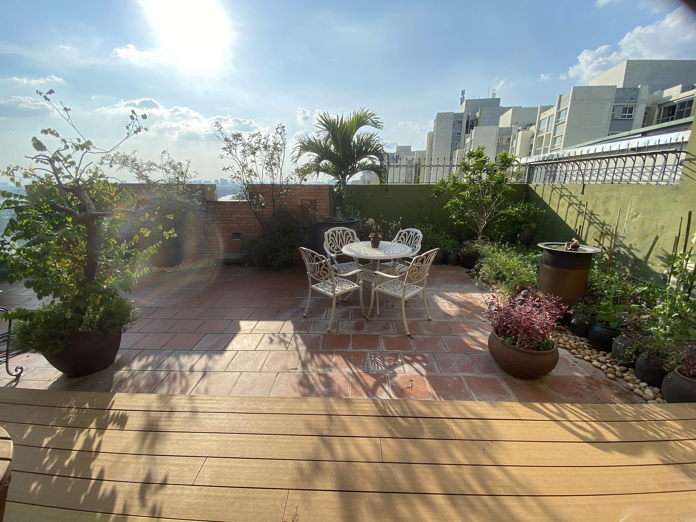 Khu vườn tràn ngập nắng trên tầng 19 của chị Huệ.
