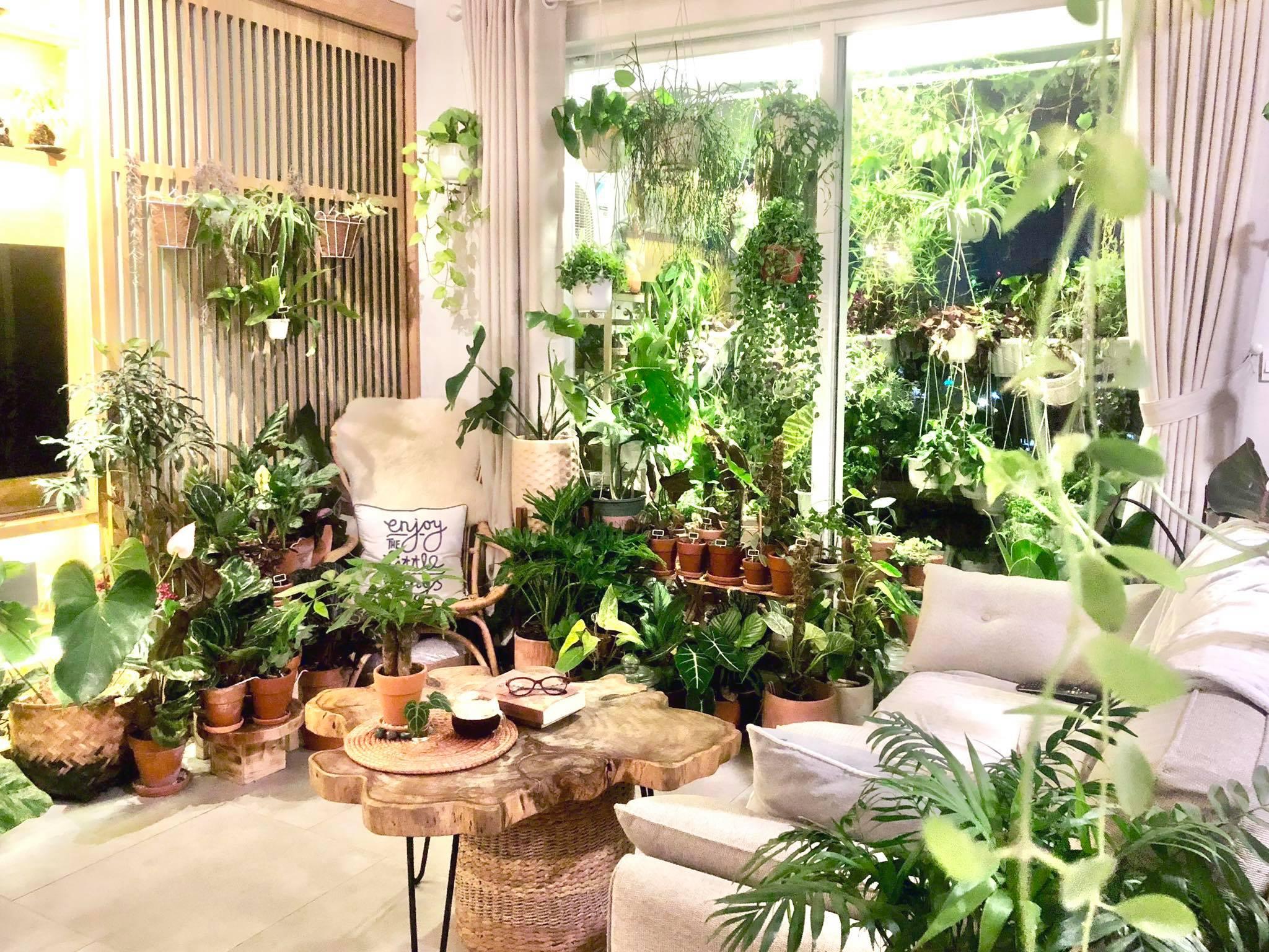 Rừng phố trong căn hộ của vợ chồng Trần Việt Tú. Ảnh: NVCC