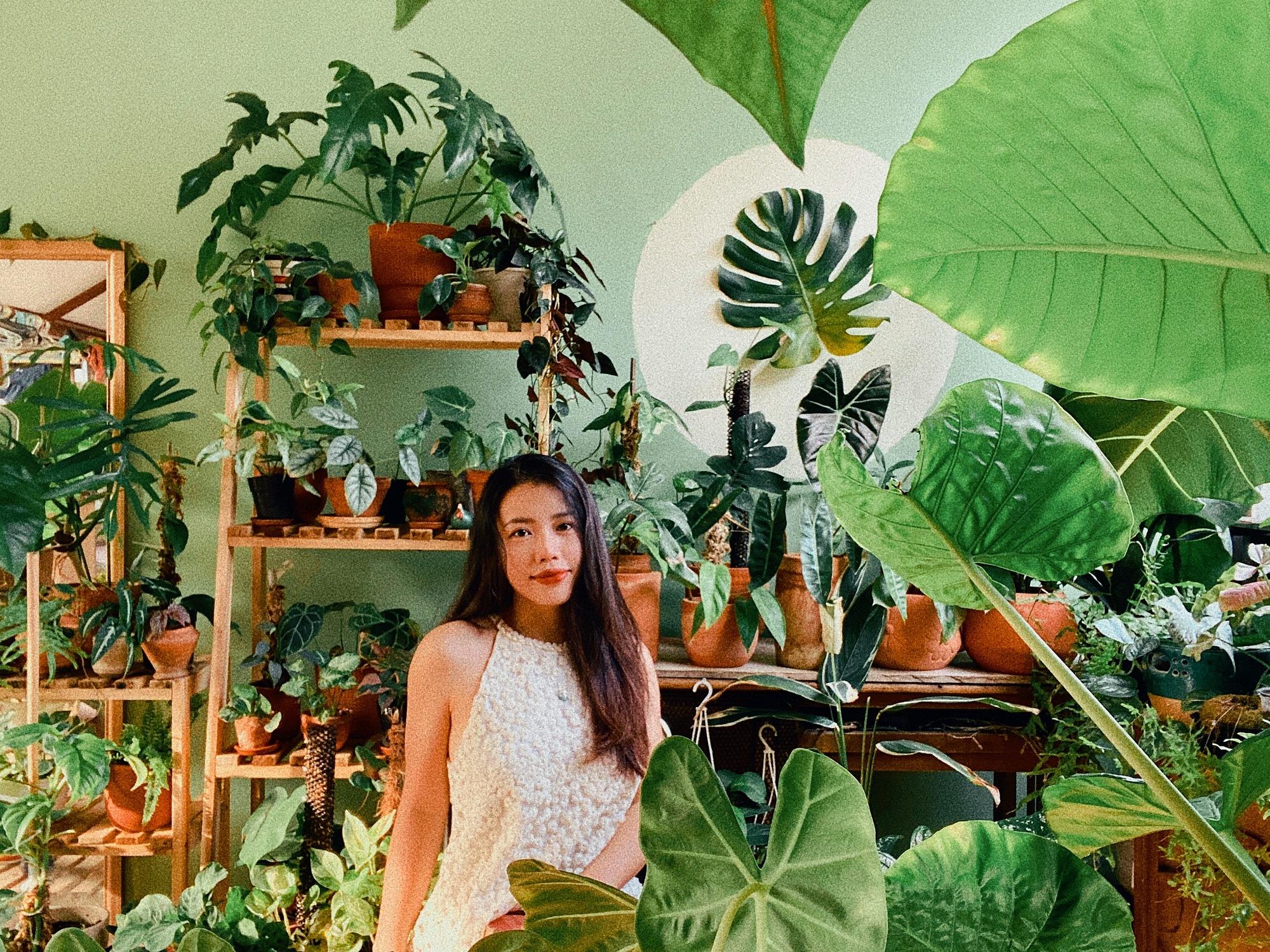 Nguyễn Ngọc ở Hà Nội cũng là người nghiện cây với hàng trăm loại trong nhà. Ảnh: NVCC